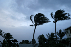 Hurricane Mitigation: Design and Construction Lessons