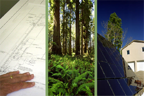 Green Design: Sustainability and Historic Preservation