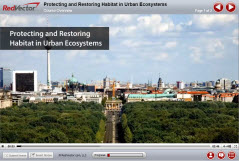 Protecting and Restoring Habitat in Urban Ecosystems