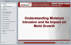 Understanding Moisture Intrusion and Its Impact on Mold Growth