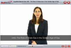 Liquefied Natural Gas (LNG): The Role of Shale Gas in the Golden Age of Gas